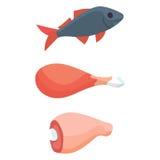 Еда высокая в протеине изолировала здоровое мясо ингридиента и сырцовую иллюстрацию вектора superfood здоровья питания группы иллюстрация штока