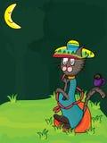 Еда мексиканського кота одинокая Стоковая Фотография