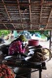 Еда насекомых на Камбодже Стоковая Фотография RF