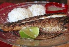 Еда на плите: рыбы, сальса и рис, Французские Гвианы Стоковое Изображение