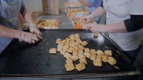 Еда пакета работника - печенья в контейнеры, пакеты Розничные торговцы и распределение бакалеи конец вверх сток-видео