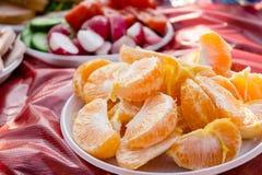 Еда пикника Апельсины, редиски и огурцы в плитах на th Стоковые Изображения RF
