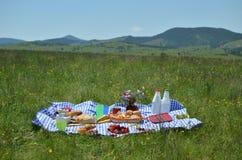 Еда пикника богачей стоковые фотографии rf