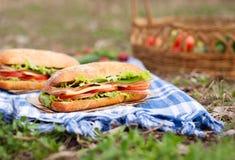 Еда пикника образа жизни сандвича багета Ciabatta с беконом Стоковое Изображение