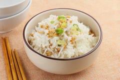 Еда рыб поцелуя кальция с рисом в белом шаре Стоковые Изображения RF