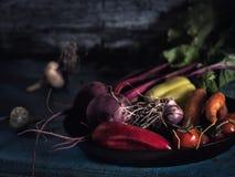 Еда свежего сбора борща ингридиентов овощей здоровая Стоковые Фото