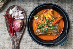 Еда скумбрии Chuchi тайская Стоковые Фотографии RF