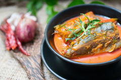 Еда скумбрии Chuchi тайская Стоковые Фото