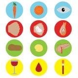 Еда для здоровья установленные иконы Стоковые Изображения