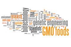 Еда GMO иллюстрация вектора
