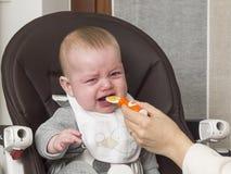 еда newborn Стоковые Изображения