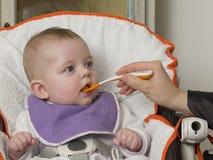 еда newborn Стоковые Изображения RF