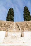 2 елевых дерева на амфитеатре Помпеи Стоковые Изображения