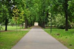 Единственный путь из парка Стоковое фото RF