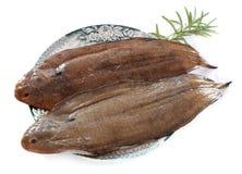 2 единственных рыбы Стоковые Изображения RF