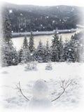 Ели реки снеговика и горы Стоковое Изображение