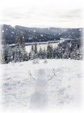 Ели реки снеговика и горы Стоковые Изображения RF