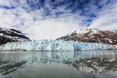 ледник залива Аляски Стоковые Изображения RF