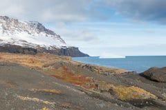 ледовитый ландшафт Стоковое Изображение