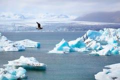 ледовитый ландшафт Стоковое фото RF