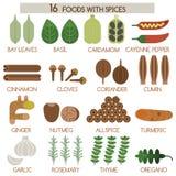 16 ед с специями Стоковые Фото