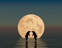 2 дельфина с анкером и звездой Стоковая Фотография RF