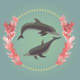 2 дельфина с морскими водорослями бесплатная иллюстрация
