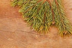 Ель рождества на деревянной предпосылке Стоковая Фотография RF