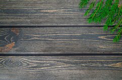 Ель рождества на деревянной предпосылке Стоковые Фото