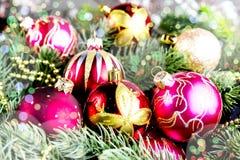 Ель рождества на предпосылке деревянной доски с космосом экземпляра Стоковые Фотографии RF