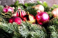 Ель рождества на предпосылке деревянной доски с космосом экземпляра Стоковые Изображения