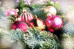 Ель рождества на предпосылке деревянной доски с космосом экземпляра Стоковые Изображения RF