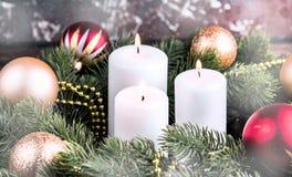 Ель рождества на предпосылке деревянной доски с космосом экземпляра Стоковое Изображение