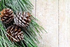 Ель рождества с pinecones Стоковая Фотография RF