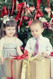 Ель рождества Стоковые Изображения