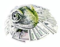 Жаба и доллары США Стоковое Изображение