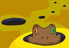 жаба отверстия Стоковые Фотографии RF