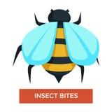 Жала пчелы укусов насекомого прослушивают или аллергия жука бесплатная иллюстрация