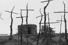 Жалоба сгорели лесом, который стоковая фотография