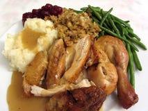 Жареный цыпленок на благодарение Стоковые Изображения