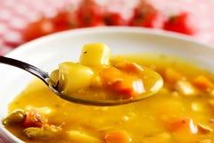 Жареный цыпленок и овощной суп Стоковые Изображения RF