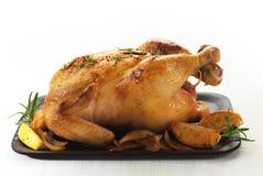 Жареный цыпленок стоковые фотографии rf
