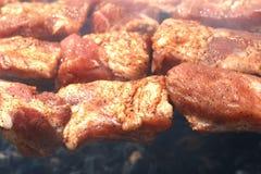 жарить в духовке барбекю близкий вверх Стоковые Изображения RF