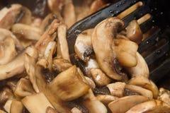 жарить в духовке грибов Стоковые Фотографии RF