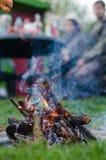 Жарить в духовке сосиску над огнем в саде лета Стоковые Изображения RF