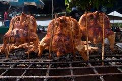 жарить в духовке цыпленка Стоковые Изображения RF
