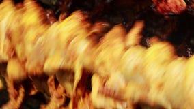 Жарить цыпленка на барбекю сток-видео