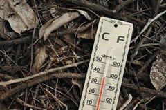 Жаркая погода, изменение климата стоковая фотография rf
