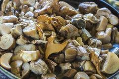 Жаркое грибов Стоковые Фото