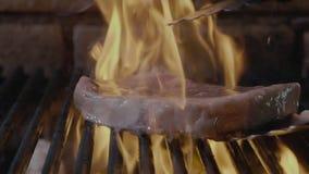 Жаркое постаретое филеем основное редкое изолировало филе свинины приготовления на гриле с нашивками акции видеоматериалы